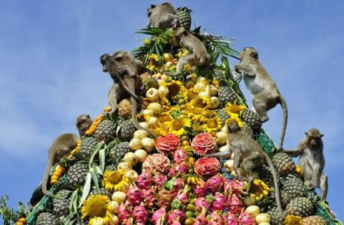 Monkey_Buffet_Festival