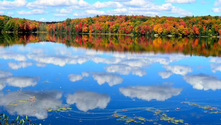 Muskoka Lakes in Autumn