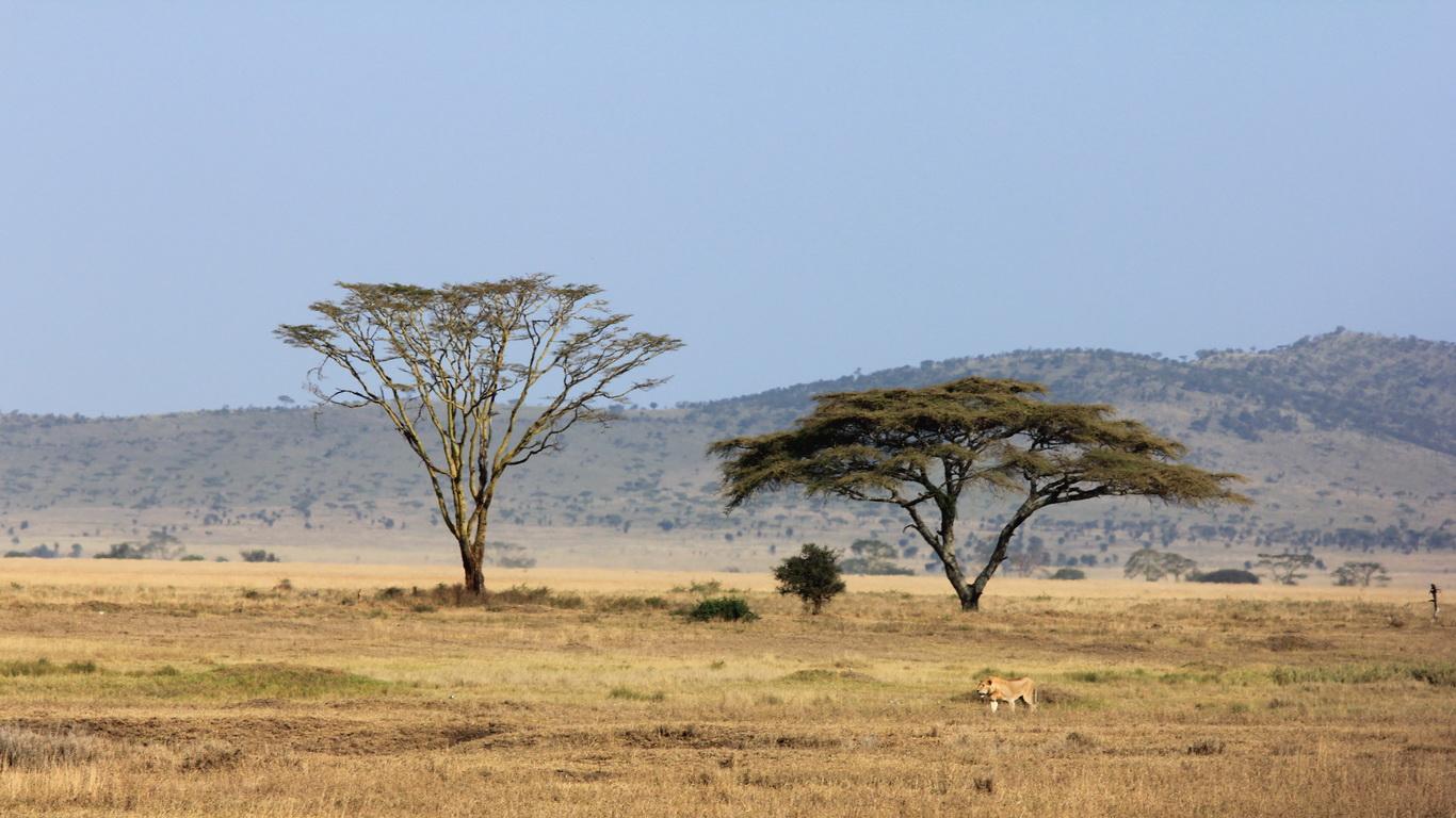 how to go incognito on safari