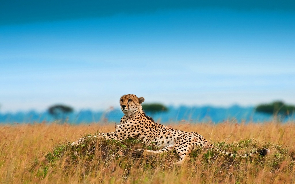 Top 10 Places To Visit In South Africa Backpacker Advice